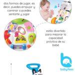 andador baby fees (6)