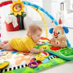 fisher-price-gimnasio-bebes-aprende-conmigo-perrito-musical-D_NQ_NP_746244-MPE29994747563_042019-F